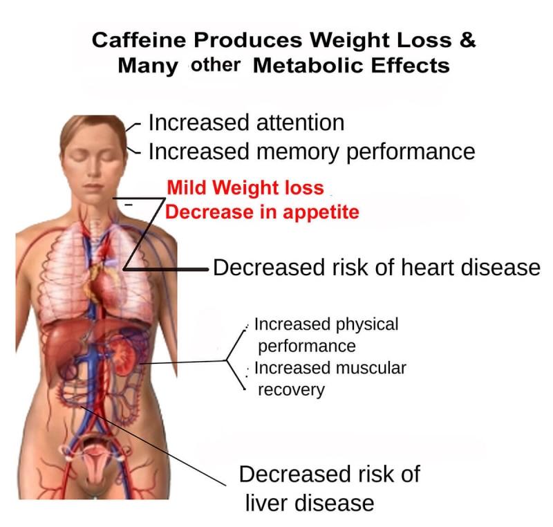 Caffeine Weigh Loss Metabolism Benefits