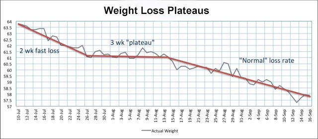 Weight Loss Plateau Graph