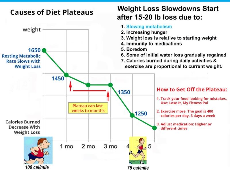 Weight Loss Plateau Chart
