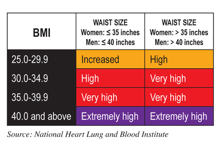 BMI vs. Waist Circumference Determines Obesity or Overweight