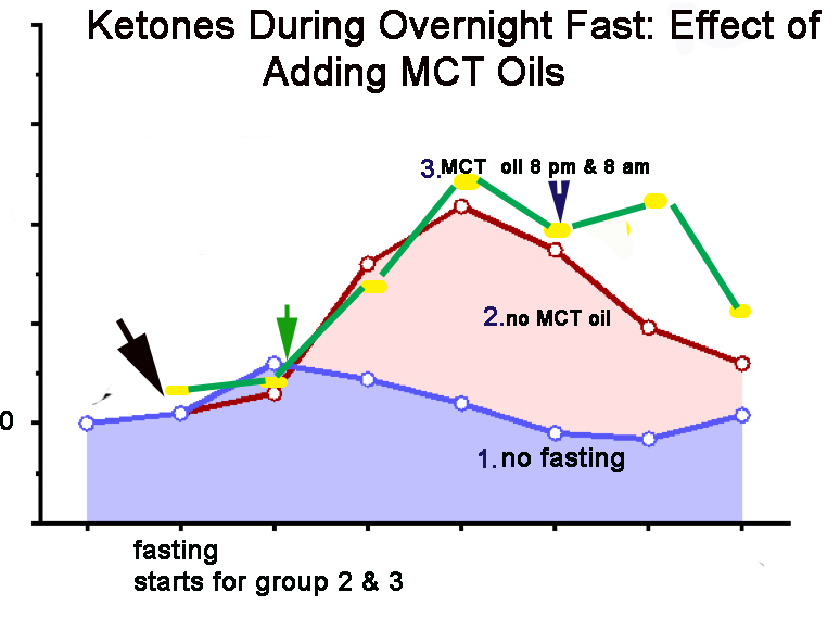 MCT oil during fasting increases ketosis and fat burning