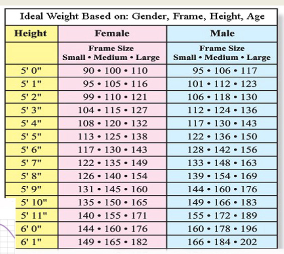 ideal weights for men and women